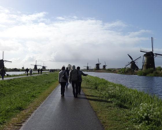 Киндердейк — край мельниц, внесённых в список ЮНЕСКО. Почувствуй дух Нидерландов! Фото Екатерины Курзеневой