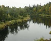 Хороша река Солза. Не только как место для туристических слётов, но и как источник воды. Фото Валентина Капустина
