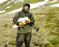 С бургомистром (полярная чайка) в руках. Мыс Флора о. Нортбрука. Июль 2014 года. Фото  Марии Гаврило