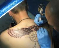 При желании сделать татуировку обращайтесь только в официальные салоны. Не лишним будет спросить у мастера санитарную книжку, узнать, как стерилизуются рабочие поверхности и будет ли использоваться одноразовый инструмент.    Фото с сайта www.novorossijsk.buyreklama.ru