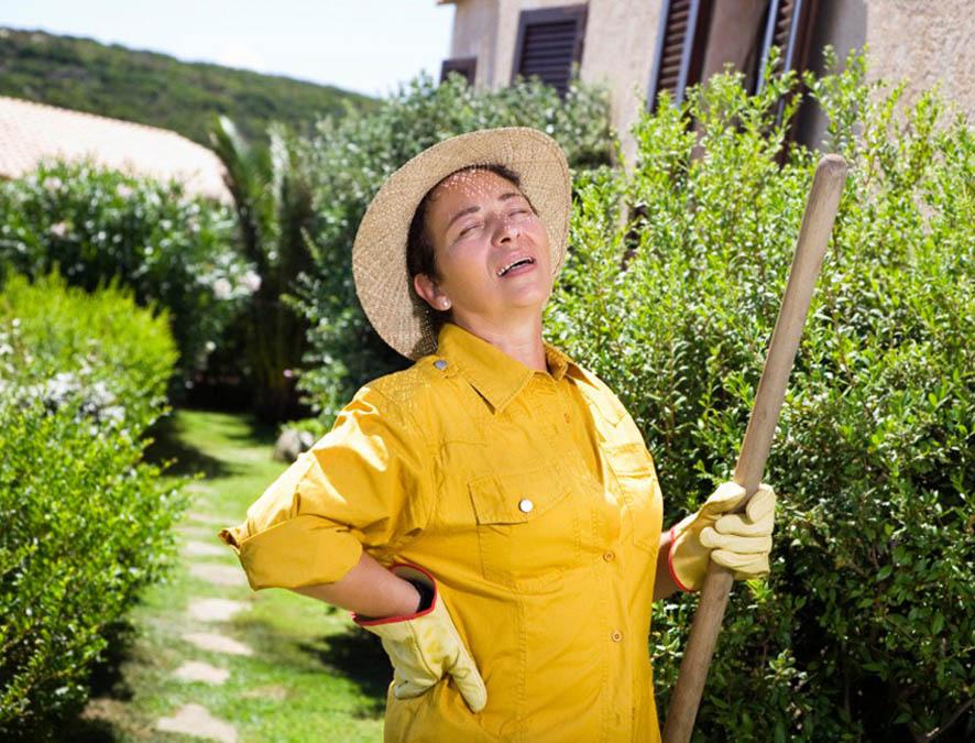 Собирая урожай, берегите спину