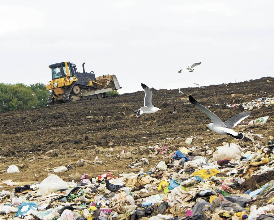 Укротить мусорные реки