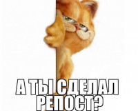 репост-m