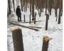 Первыми находку в Ягринском бору обнаружили жители близлежащих домов.