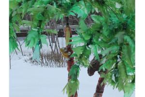 Вот такие экзотические деревья «выросли» у инструментального цеха «Звёздочки».