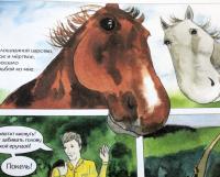 Главные герои рассказа «О чём плачут  лошади» — животные.