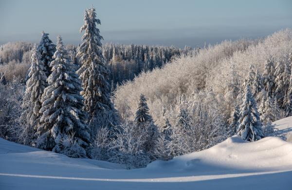 Пейзаж на Красной Горке.